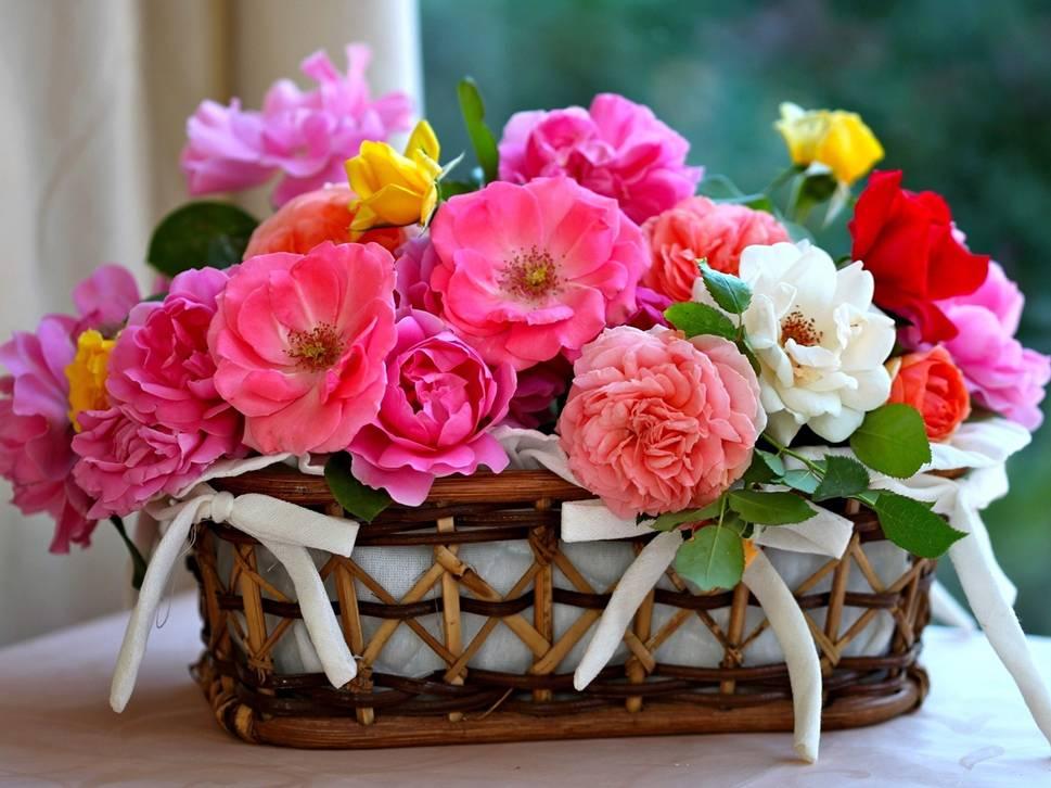 открытку с цветами к дню рождения рабочий стол